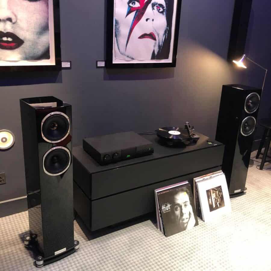 Fyne Audio F501Sps