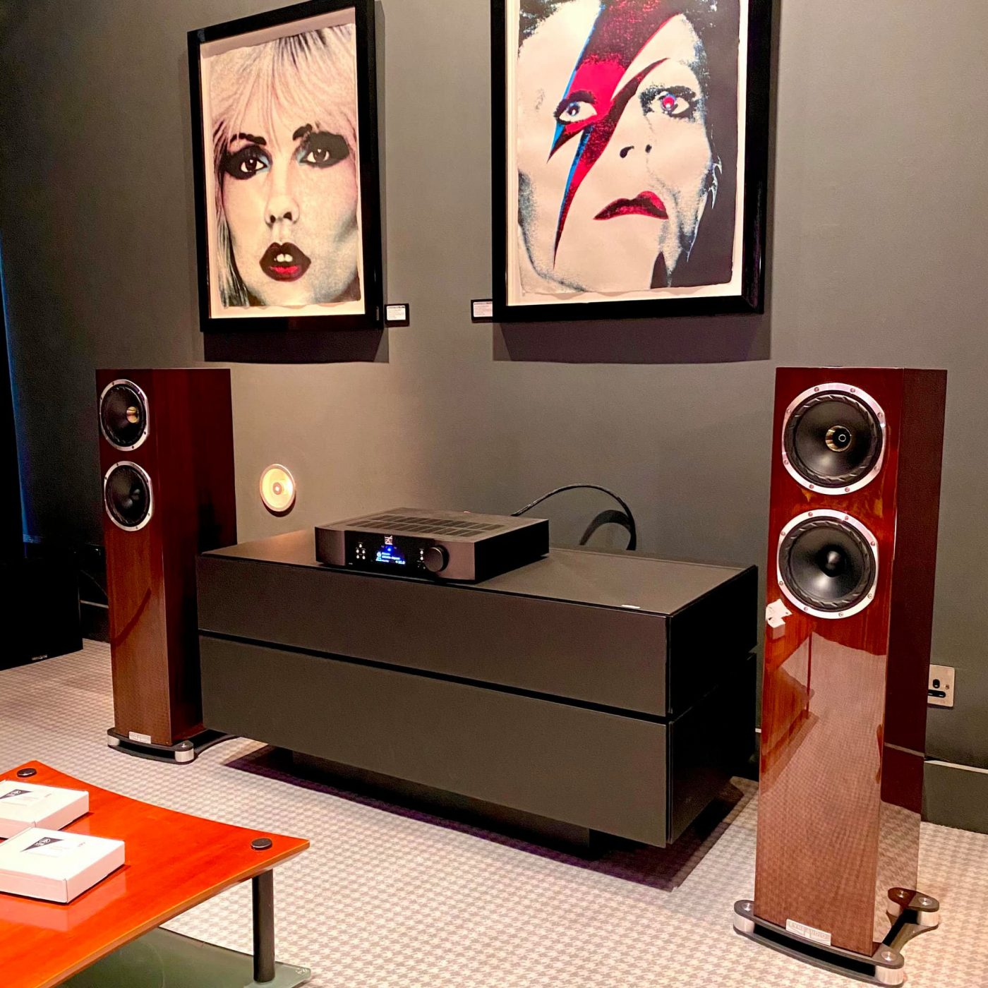 Fyne Audio F501SPs